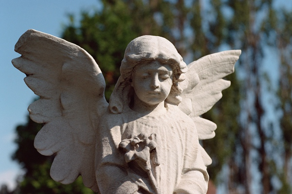 angel-statue-with-flower