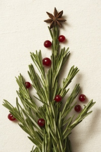 christmas-sprig-with-cranberries